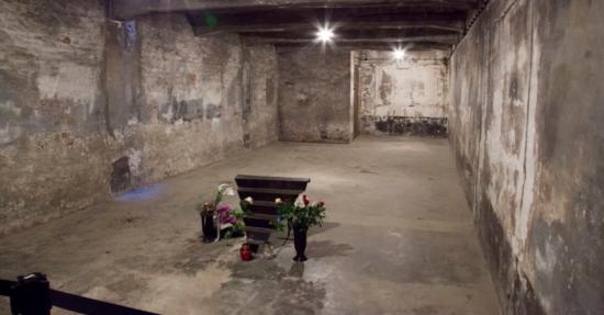 Förneka aldrig förintelsen, här är 10 bevis från Auschwitz.